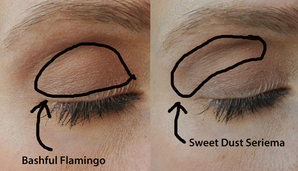 Natural, Fresh-faced Tutorial  Eyeshadows