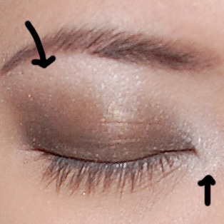 Highlight the brow bone and inner corner.