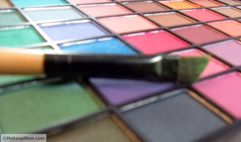 Picture of Angled Eyeshadow Brush
