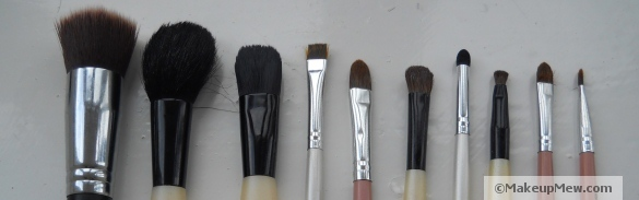Image of a variety of common make up brushes