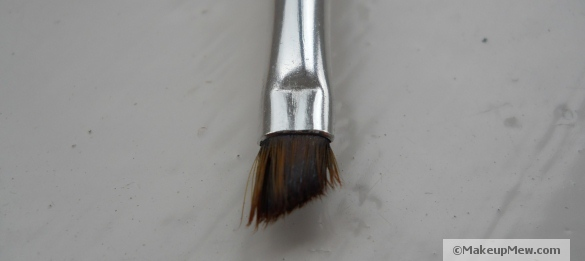 Image of small angular brush